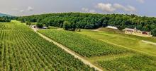 FLX Winery Heron Hill